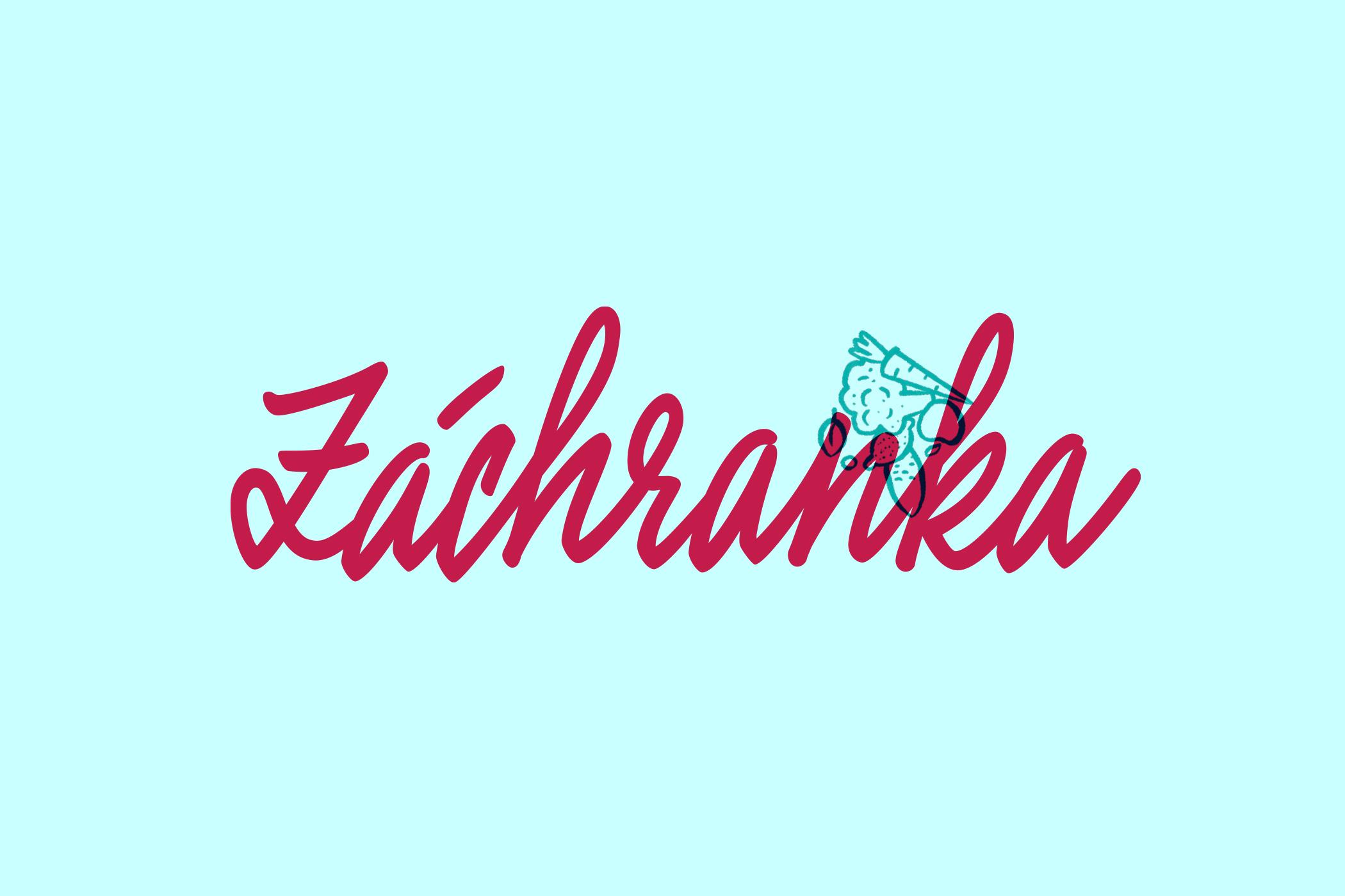 zachranka_ZACHRANKA